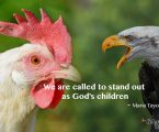 You are made to stand out, not fit in