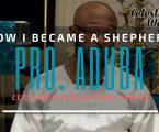 How I became a Shepherd – Pro Aduba of Life Everlasting Parish