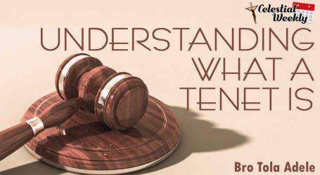 Understanding what a Tenet is