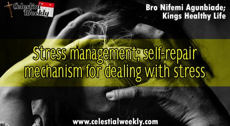 Stress Management : Self-repair mechanism for dealing with stress